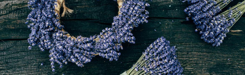 5 způsobů, jak se zbavit otravného hmyzu: Nenechte si kazit léto a zatočte s ním jednou provždy