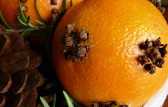 Netradiční citrusová dekorace pro váš byt