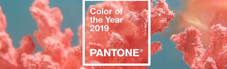 Barvou roku 2019 je podle institutu Pantone korálová