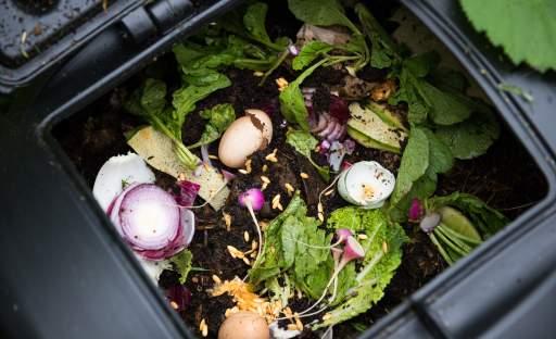 Co vám nikdo neřekl o kompostování a měli byste to vědět ...