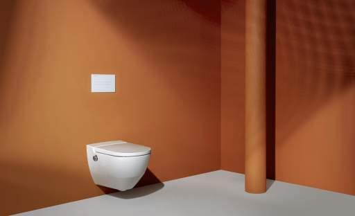 Místnost, o které se příliš nemluví. Toaleta …