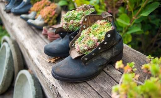 Nový život pro staré holínky v originálníbota/nické zahradě