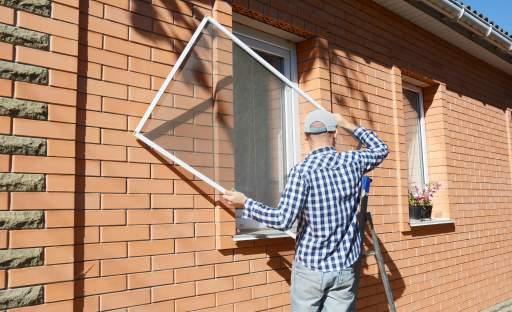 Otravným bzučícím hostům vstup do bytu či domu zakázán