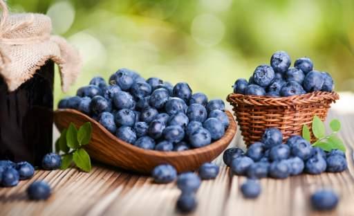 Modré bobule zdraví, které by neměly chybět v žádné zahradě
