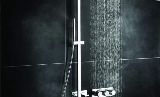 Pohodlí sprchového koutu ocení každý z nás