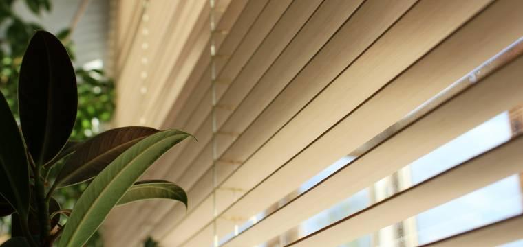 Žaluzie, rolety nebo okenice? Které z nich vás nejlépe ochrání před letními vedry?
