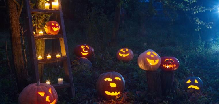 Halloween – jak si decentně a vkusně vyzdobit zahradu a dům v duchu tohoto svátku?