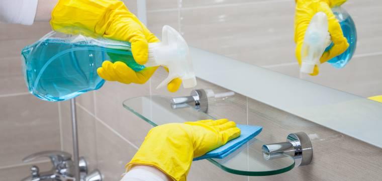 Koupelna a toaleta – jak je udržovat v čistotě a lesku?