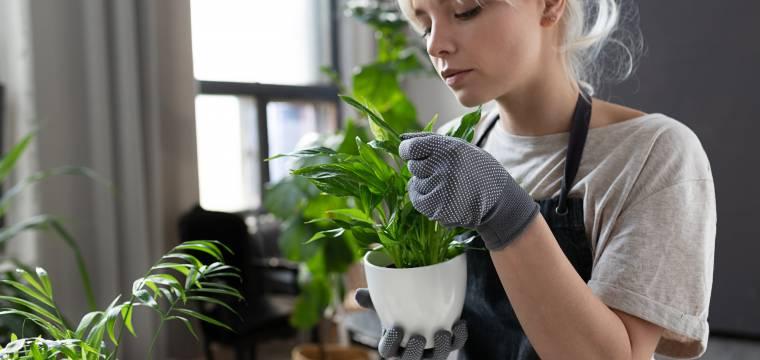 Chcete mít doma kousek přírody? Dejte se na chytré pěstitelství