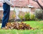 Jak a proč z trávníku odstranit spadané listí a jak jej recyklovat?