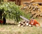 S řetězovou pilou vám půjdou některé práce na zahradě mnohem snáz