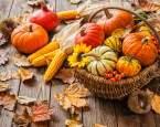 Podzimní výzdoba aneb jak přivést k sobě domů trochu přírody