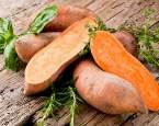 Stále teplejší podnebí fandí sladkým bramborám