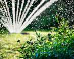 Letní zahrada – jak o ni pečovat, na co nezapomínat a jak je to se zavlažováním?